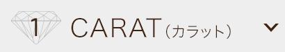 1.CARAT(カラット)