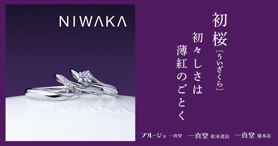 NIWAKA-俄-にわか-初桜