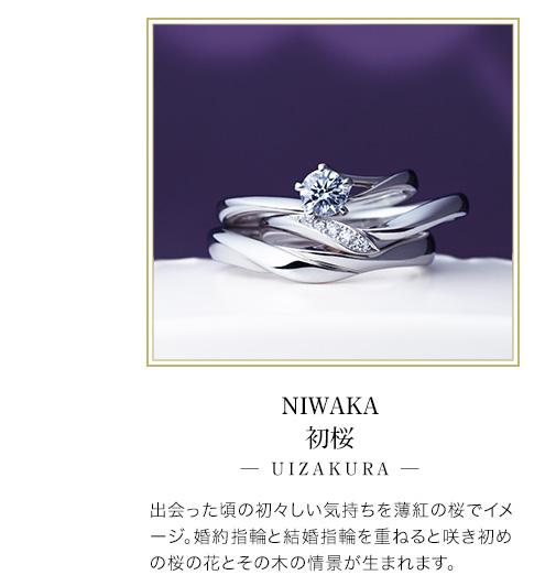 NIWAKA初桜─ UIZAKURA ─