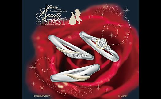 Disney Beauty and the Beast(ディズニー美女と野獣)